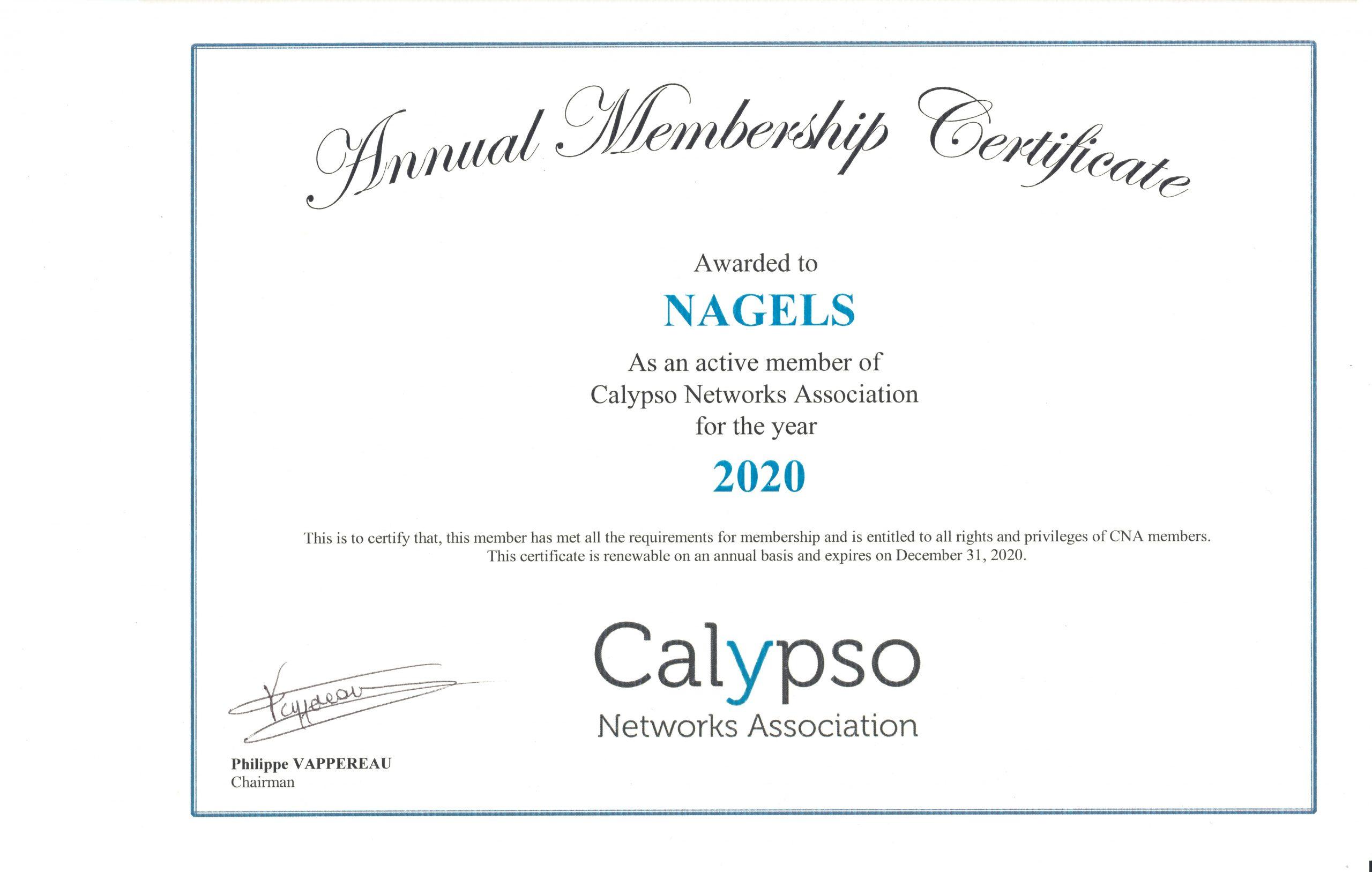 Calypso Networks Association 2020